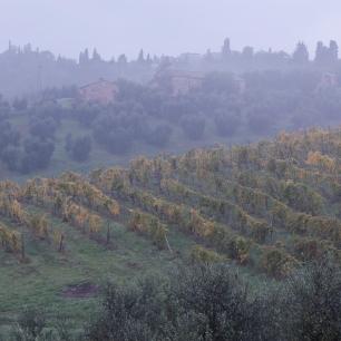 Dawn at Dievole - Tuscany