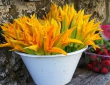 Zucchini Flowers - Umbria
