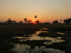 Sunset on the Okavango Delta, Botswana