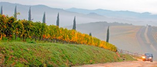 Sunrise over the Vineyards - Tuscany